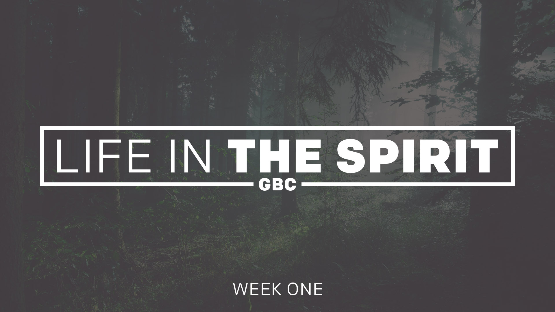 Life in the Spirit | Week One