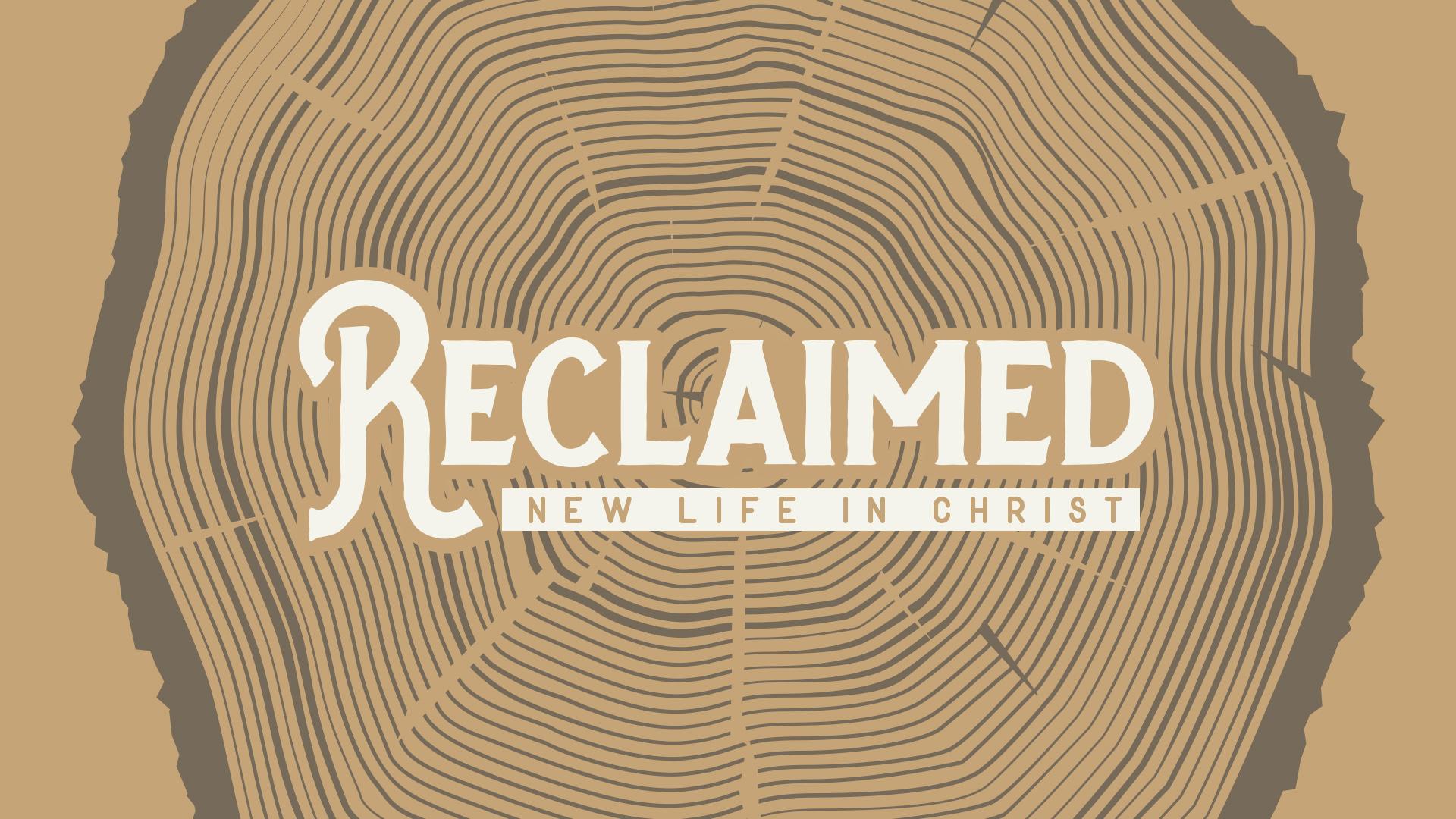 Reclaimed – Week Three
