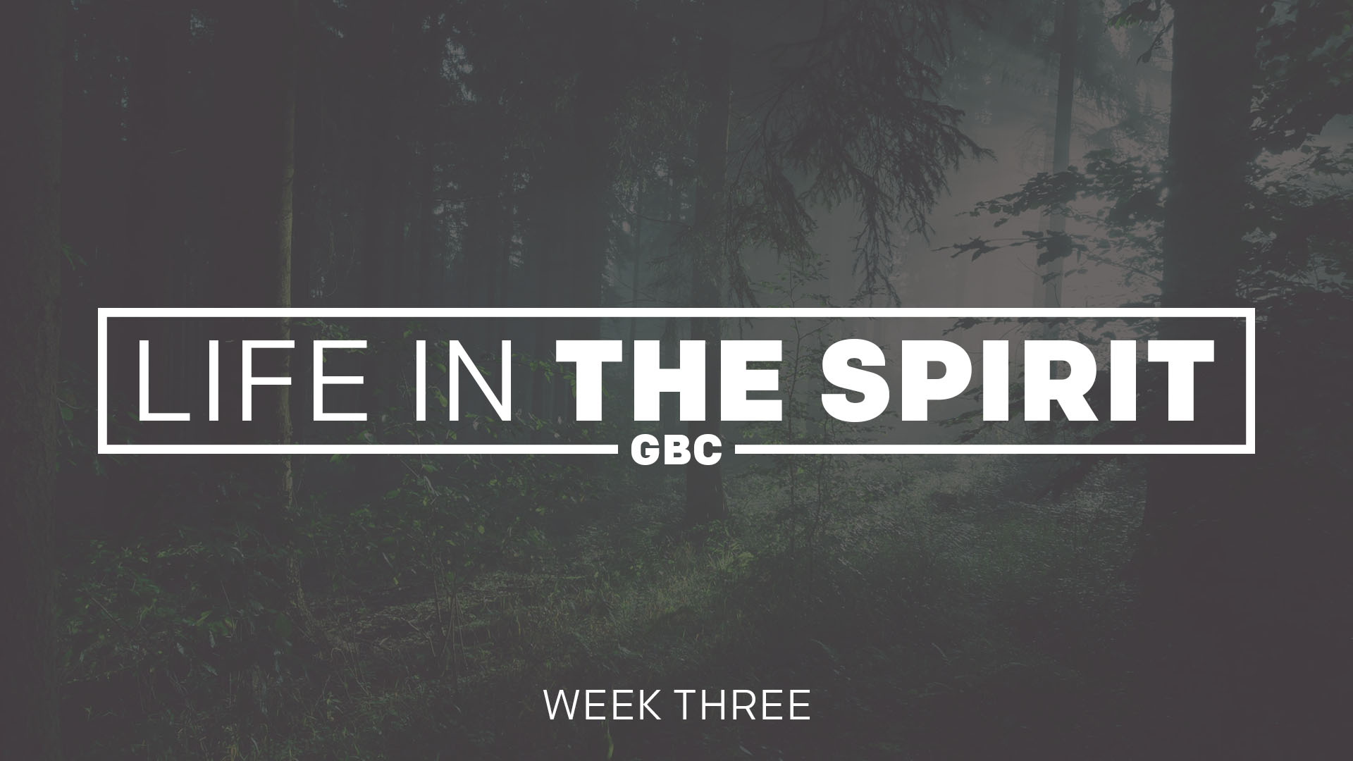 Life in the Spirit | Week Three
